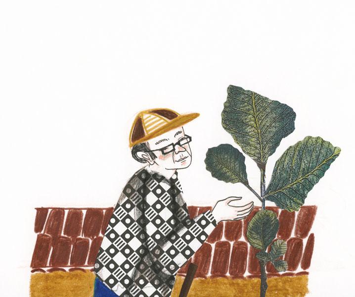 un homme monte sur une échelle pour cueillir des choux portugais, illustration