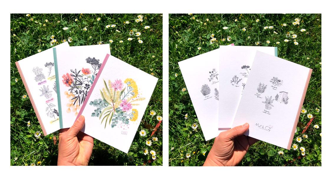carnets illustrés - fleurs corse